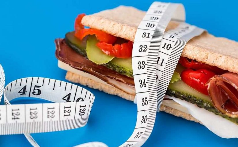Program dla dietetyków online